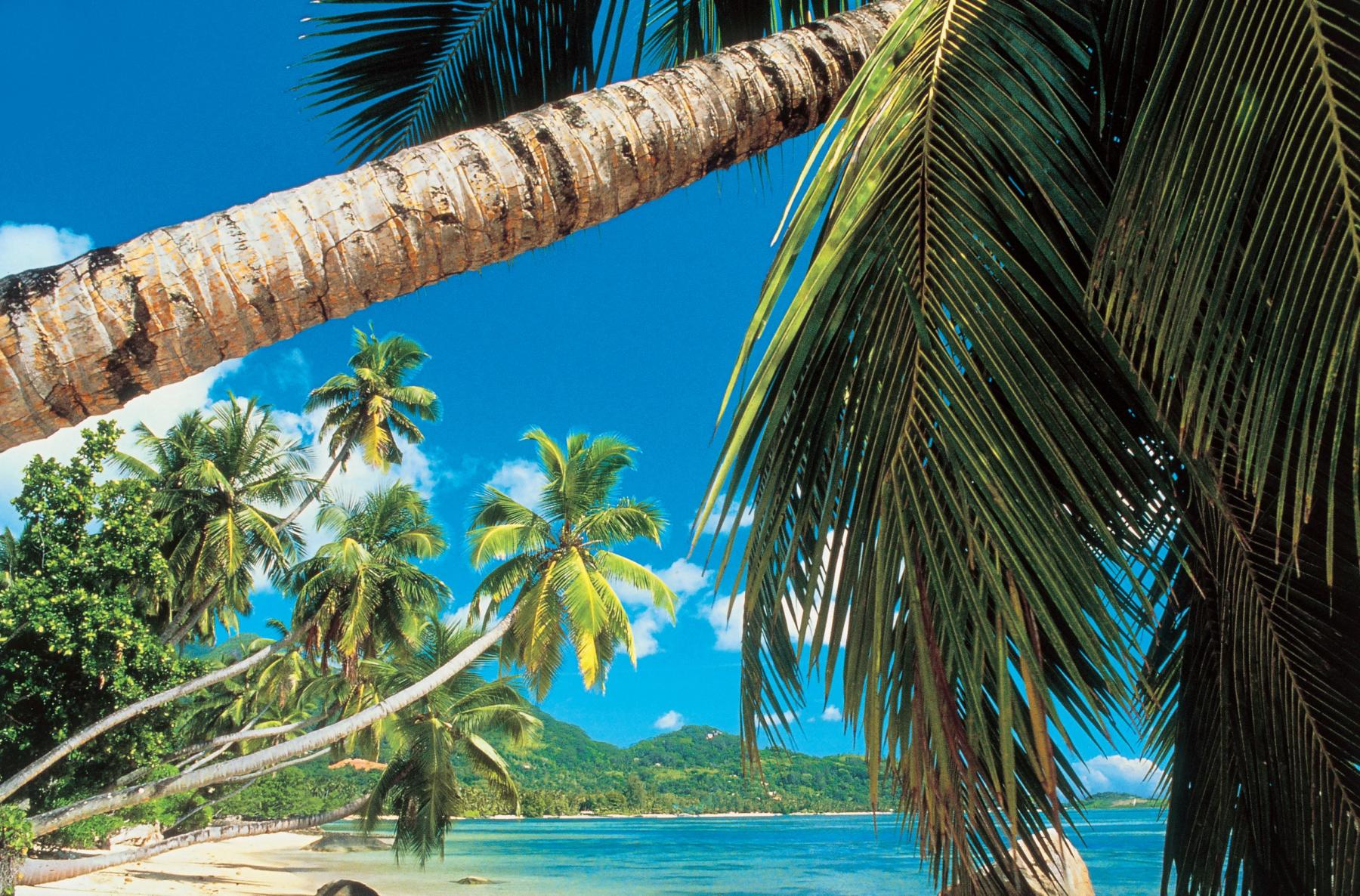 India ookeani kruiis Mauritius, Seishellid, Madgaskar, Reunion. Lennud Helsingist hinnas!